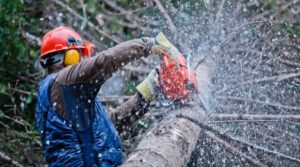 A man using a chainsaw wearing protective gears