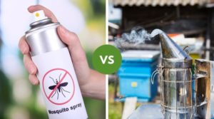 An image of a mosquito Repelant on the left, and a can of Fogger on the right side