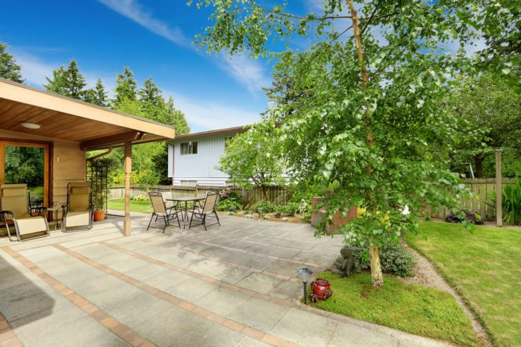 Backyard with walkout patio. Birch tree growing on backyard area