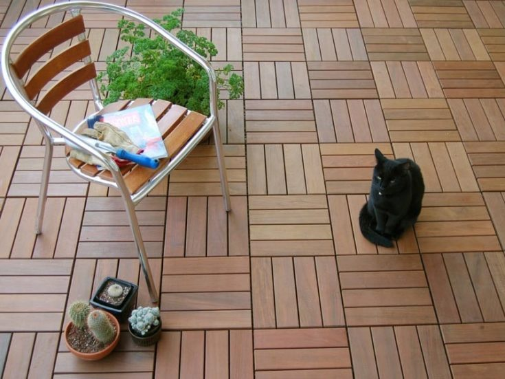 A single furniture with succulent on the side and a black cat sitting on a wooden tiles