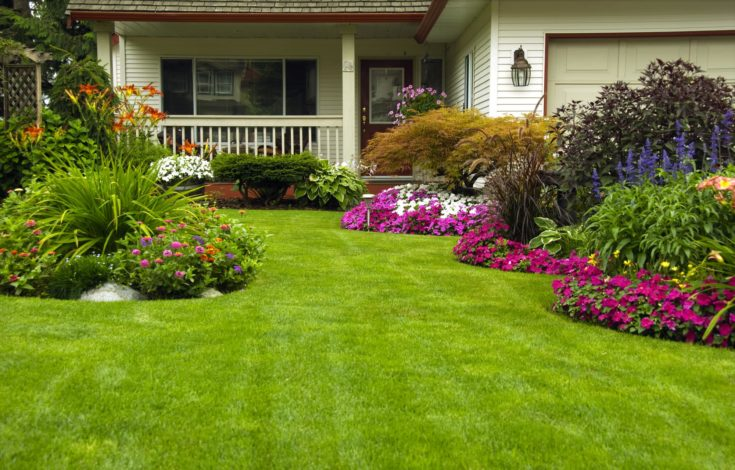 A beautifully maintained garden at a residential home.