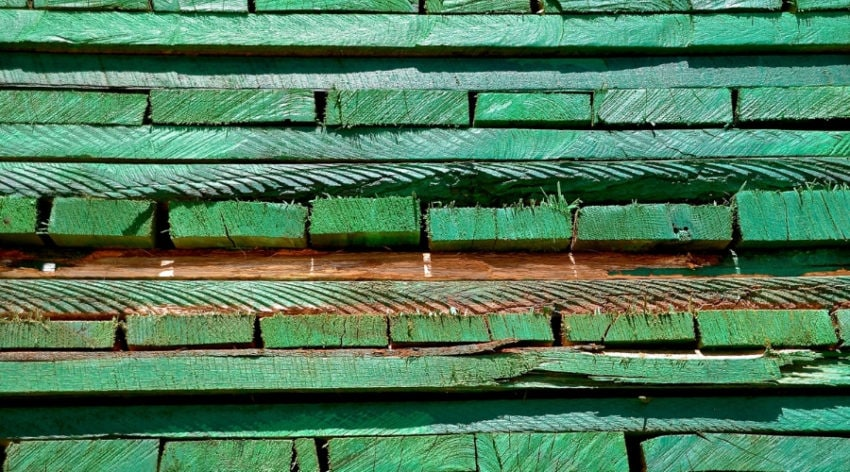 Featured Image - Is Pressure Treated Wood Safe_