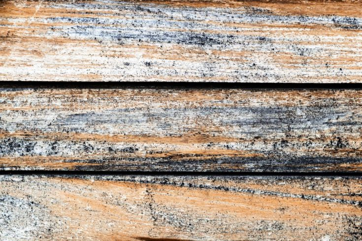 Weathered old striped texture of wooden boards-a natural background pattern of treated wood