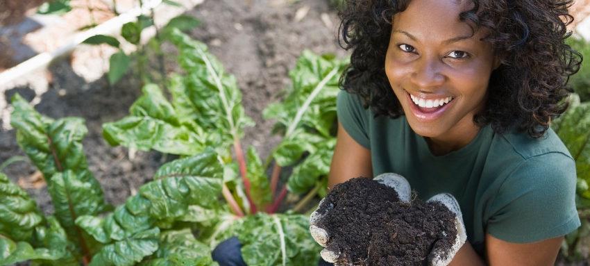 Benefit of gardening