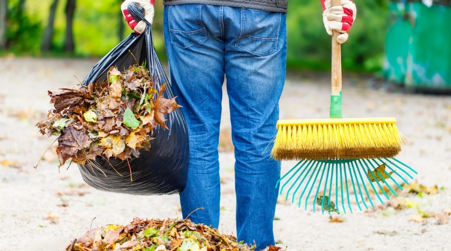 Featured Image - The Best Leaf Raking Hacks Every Homeowner Should Know