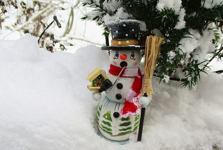 Cute little snowman holding a broom with adorable eyes standing on a snow with pine needles on its background