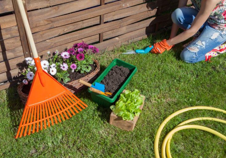 orange rake
