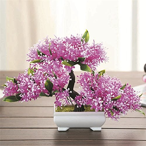 Tiny bonsai tree blooming with purple like flowers placed in a small white pot situated indoor