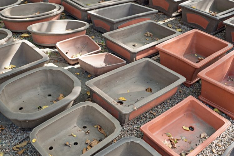 Big empty bonsai pots on a ground with garden stones