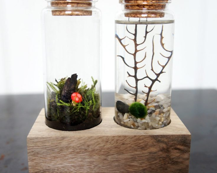 Two jars placed in a wooden foundation covered with cork filled with plants inside
