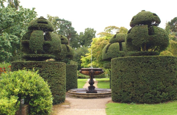 Sculptured fountain and yew topiary in a garden