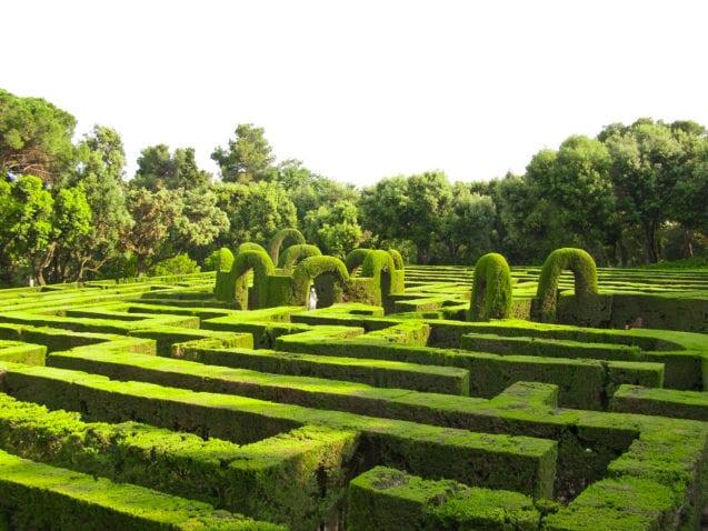 English green labyrinth hedge maze