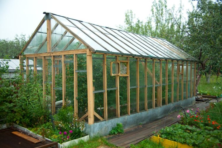 Greenhouses for growing vegetables or flowers in a volatile climate