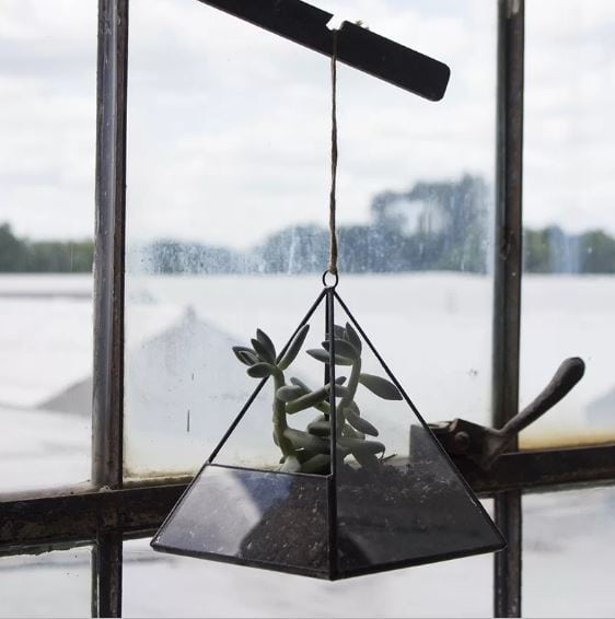 Indoor hanging triangular florarium with succulent planted on a soil inside