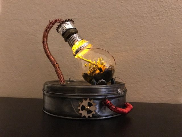 Customized light bulb having a plant and soil inside it connected on a twisted together copper wires