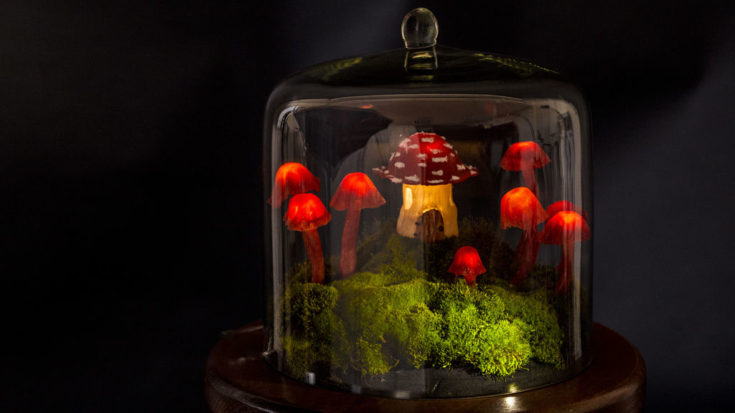Glowing mushrooms on a grass inside the transparent glass terrarium