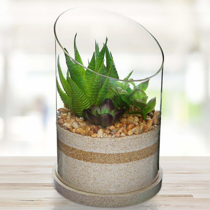 Cylinder shaped terrarium with three layers of sand inside and pebbles with succulents on top of it