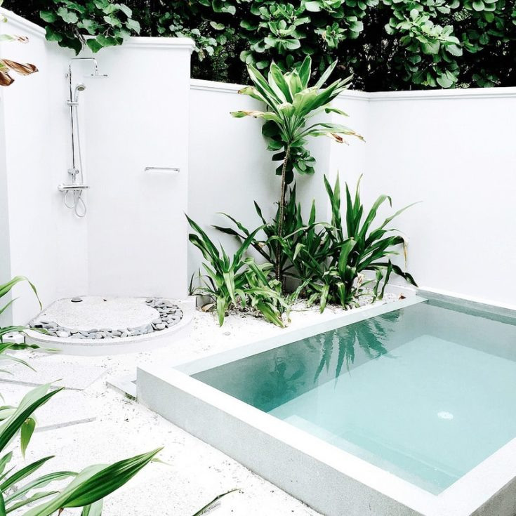 Square shaped mini pool with shower area on the left side and plants near it