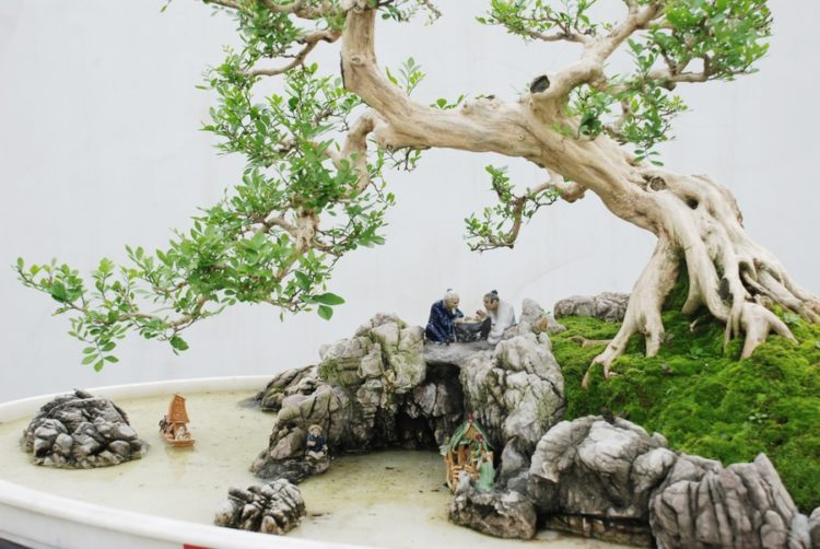 A miniature of pond decorated with ceramic man on the side of a leaning bonsai planted on a rock.