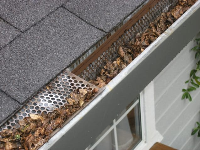 Gutter guard with a lot of dried leaves on it