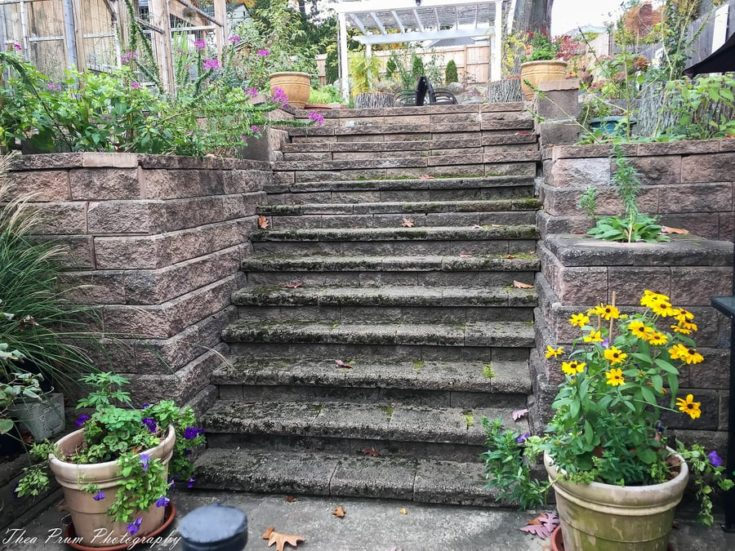 Stone stairway to a secret garden