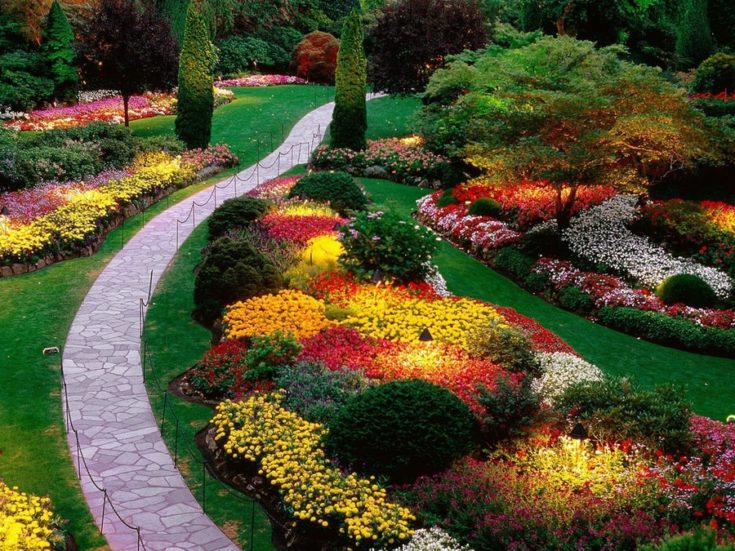 a garden full of colorful plantings that creates a vibrant feel