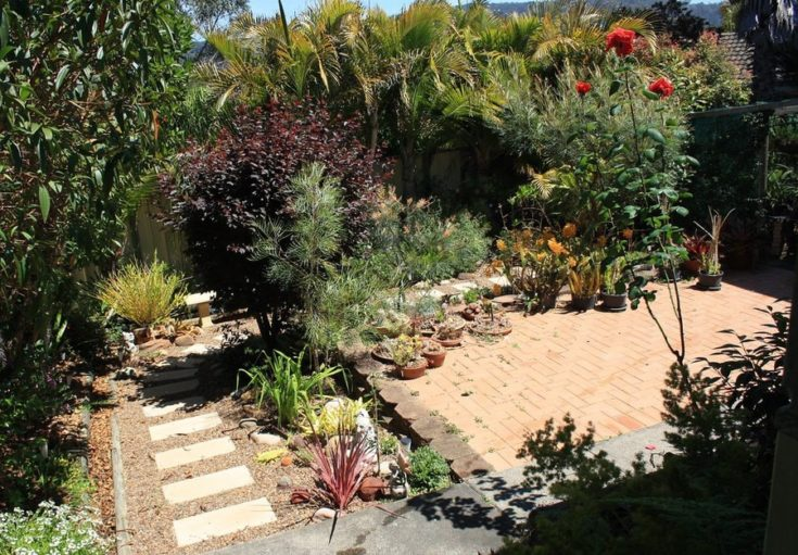 a garden that highlights the miniaturized xeriscape