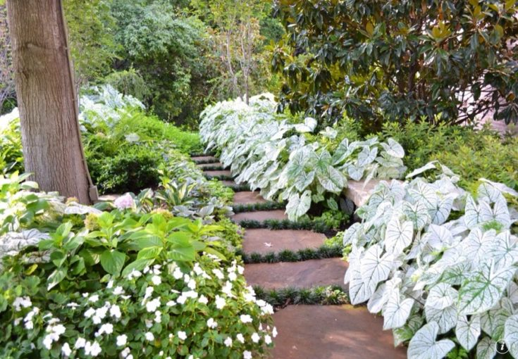 hidden walkways with perennials and annuals on the side