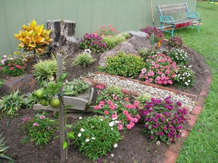 small garden space with various of plants and flowers