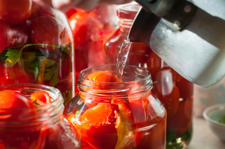 Canning process of tomato in mason jar. On background is few jars with tomatoes. Conservation and cooking.