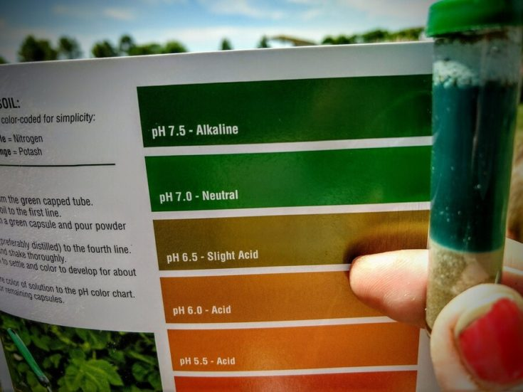 Pointing at the soil test guide on the brochure