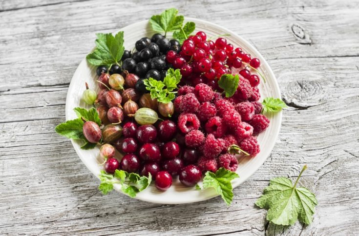 berries - raspberries, gooseberries, red currants, cherries, black currants on a white plate on a light wooden background