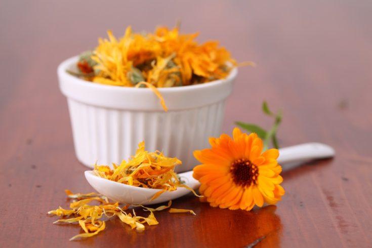 Close-up of dried pot marigolds. Shallow dof