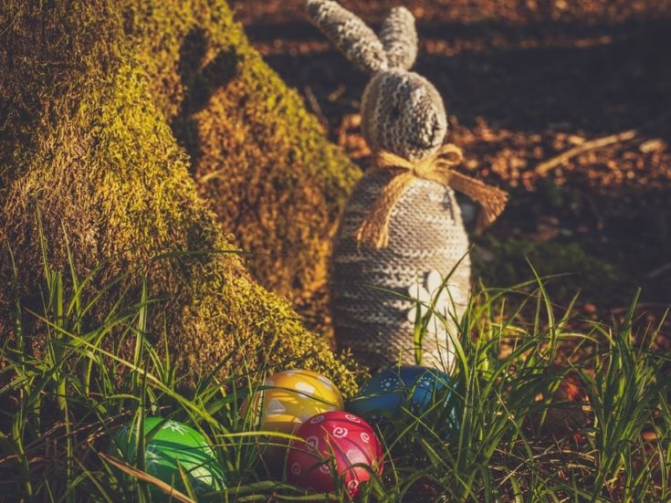 Easter Bunny And Eggs On Grass Field