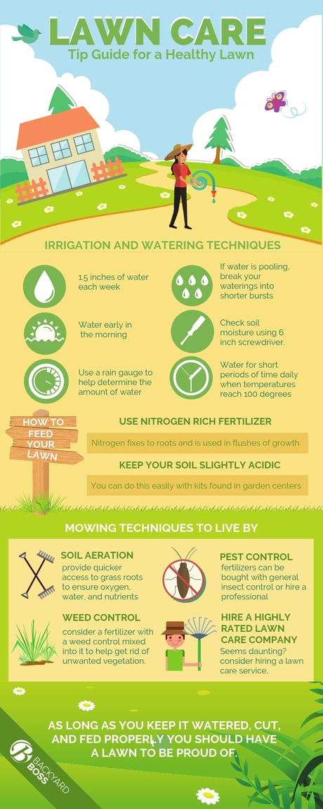 Lawn Care Tip Guide for a Healthy Lawn - Info