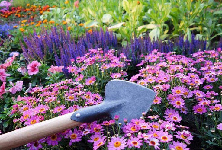 DeWit Perennial Planter