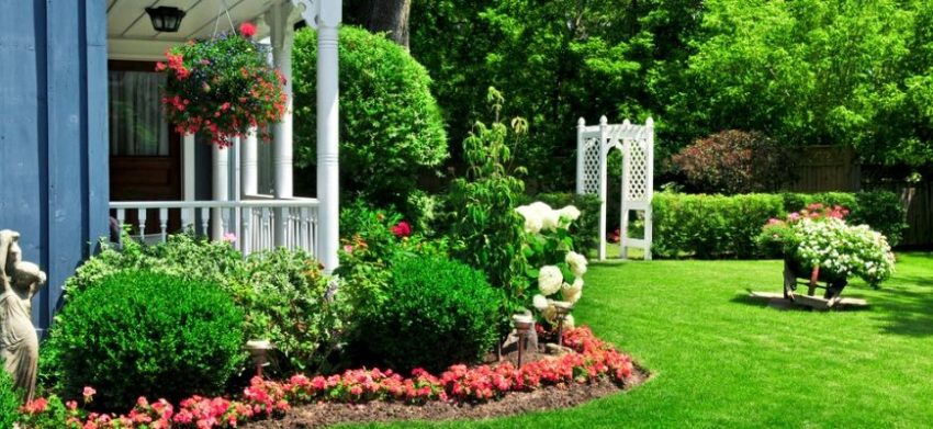 Some of the Best Landscaping Design Ideas and Tips For Beginners