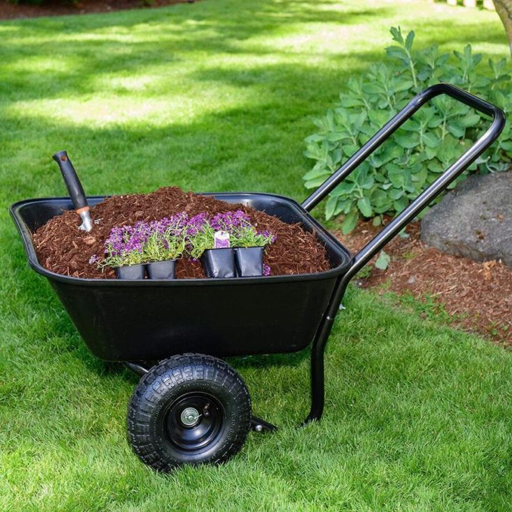 Garden Star 70019 Garden Barrow Dual-Wheel Wheelbarrow Garden Cart