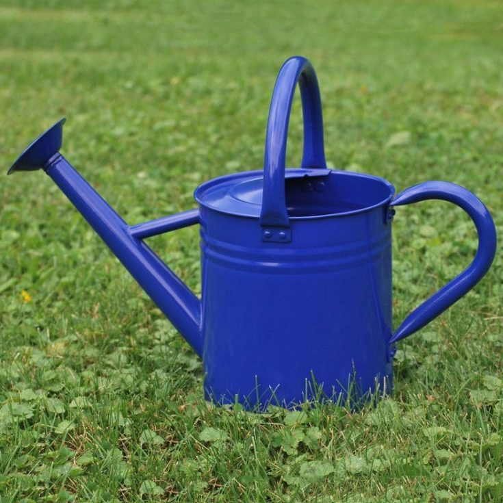 Gardener's Select 1.85-Gallon Watering Can