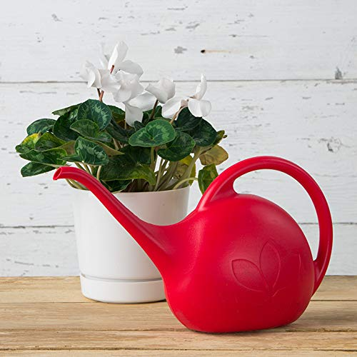 Novelty 30605 Indoor Watering Can, 1 2 Gallon