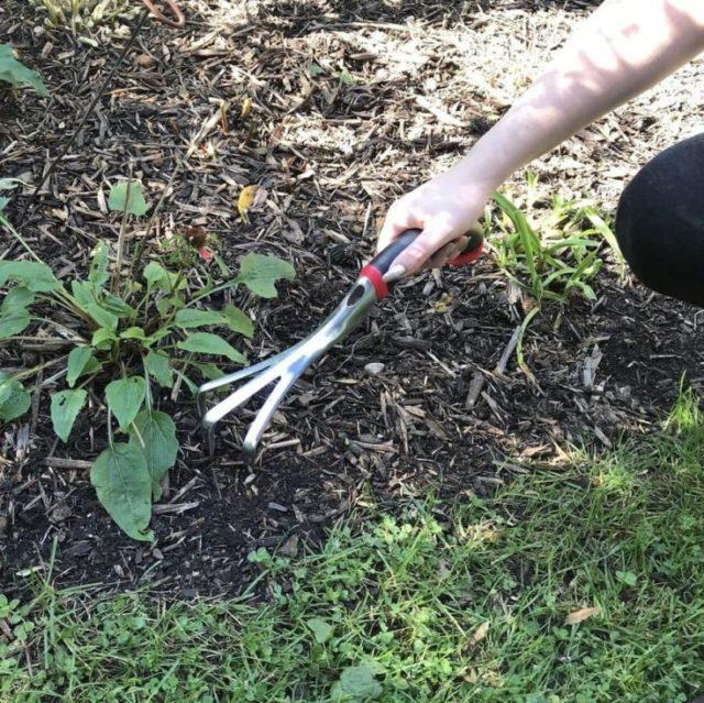 Radius Garden 10301 Ergonomic Aluminum Hand Cultivator, Blue