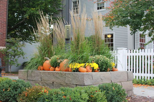 green plants, flowers, pumpkin on the top of the bricks, green plants below