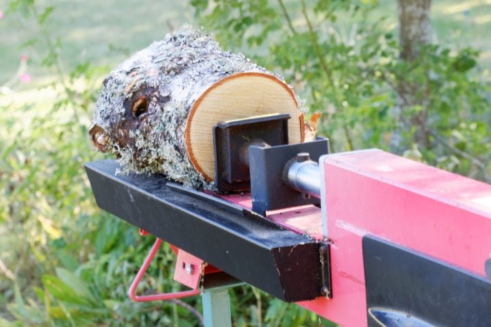 Log splitter machine splitting a birch log