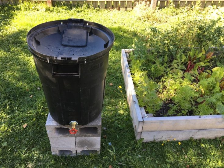 a DIY rain barrel placed at the top of cinder blocks in the backyard
