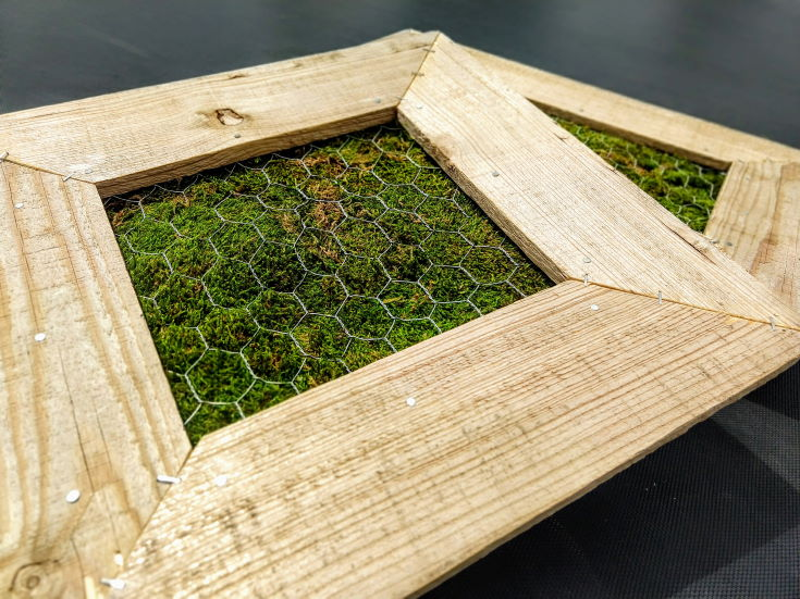 2 wooden frames top with chicken wires with green leaves inside