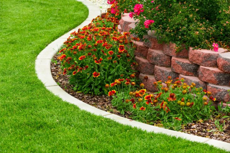 Beautiful garden with concrete lawn edging.