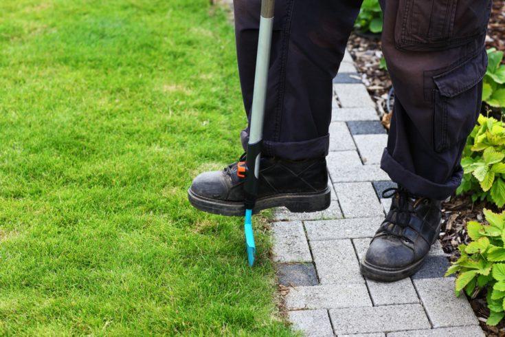 Garden care - edging lawn