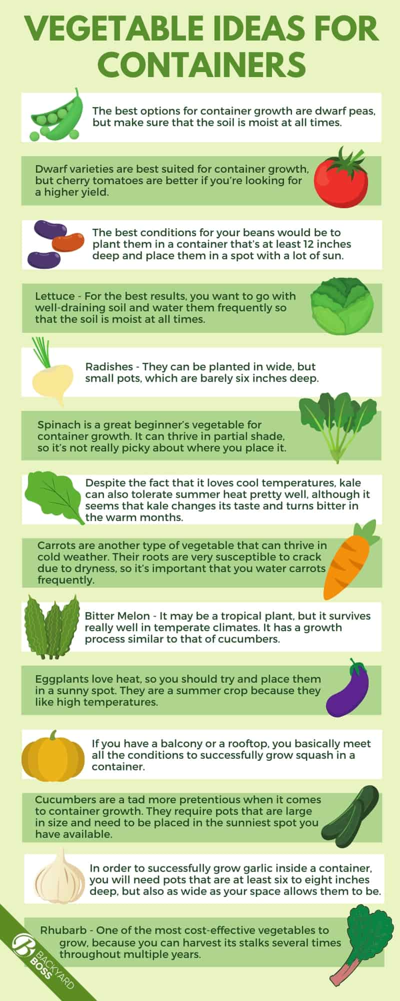 Vegetable Ideas for Containers - infographic
