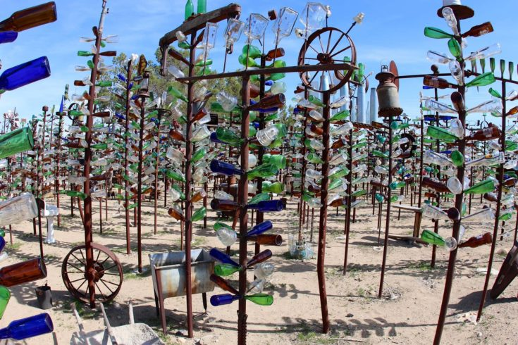 Creative bottle trees in an open ground.