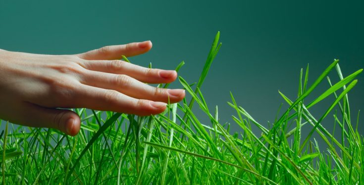 Hand over green wet grass over dark background